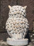 Detailed Owl Latex Mould